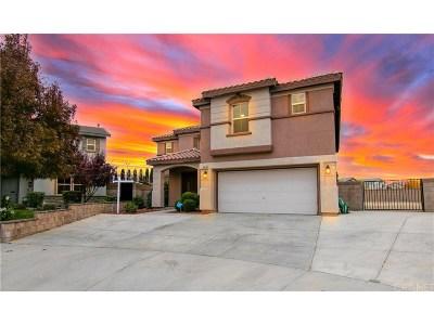 Lancaster Single Family Home For Sale: 43313 Flag Street