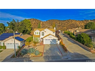 Castaic Single Family Home For Sale: 31208 Quail Valley Road