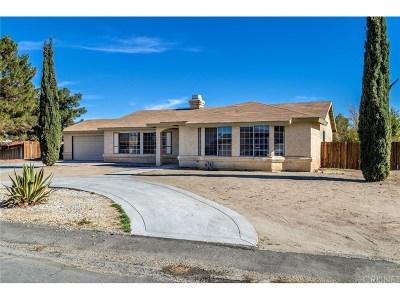 Littlerock Single Family Home For Sale: 37008 94th Street East