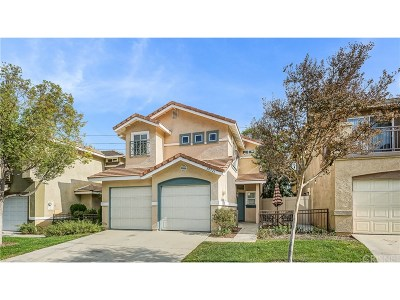 Castaic Single Family Home For Sale: 30323 Marigold Circle