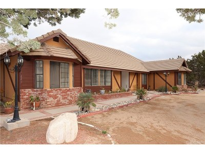 Palmdale Single Family Home For Sale: 40520 22nd Street West