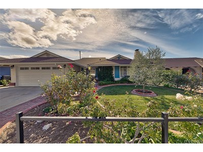 Canyon Country Single Family Home For Sale: 19508 Chadway Street
