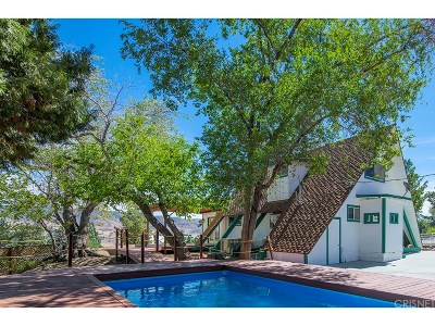 Leona Valley Single Family Home For Sale: 40021 92nd Street West