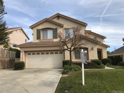 Single Family Home For Sale: 28454 Haskell Canyon Road