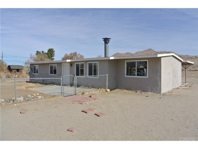 Lancaster Single Family Home Active Under Contract: 42936 171st Street East