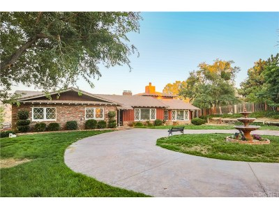 Leona Valley Single Family Home For Sale: 39954 90th Street West
