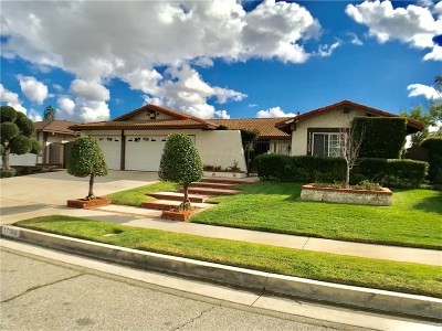 Northridge Single Family Home For Sale: 17100 Gledhill Street