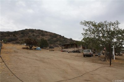 Palmdale Single Family Home For Sale: 33446 Angeles Forest