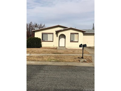 Lancaster Single Family Home For Sale: 6847 Sagebrush Avenue
