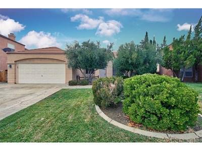Palmdale Single Family Home For Sale: 38873 Barrington Street