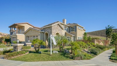 Simi Valley Single Family Home For Sale: 3602 Young Wolf Drive