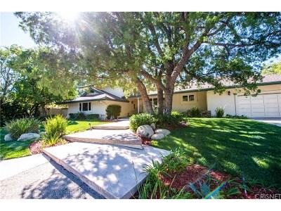 Granada Hills Single Family Home For Sale: 16900 Pineridge Drive
