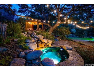 Calabasas Single Family Home For Sale: 471 Cold Canyon Road