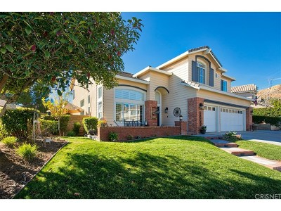 Saugus Single Family Home For Sale: 28735 Haskell Canyon Road