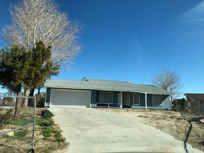 Palmdale Single Family Home For Sale: 40364 165th Street East