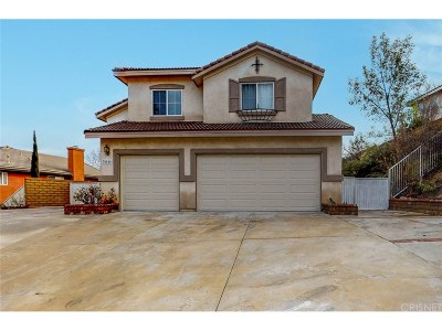 Castaic Single Family Home For Sale: 30446 Vineyard Lane