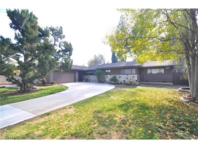 Woodland Hills Single Family Home For Sale: 23228 Erwin Street
