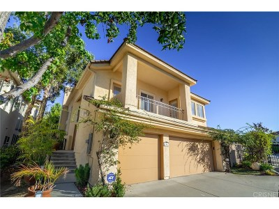 Calabasas Single Family Home For Sale: 3402 Stoneridge Court