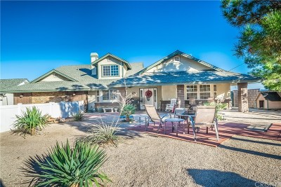Palmdale Single Family Home For Sale: 41050 13th Street West