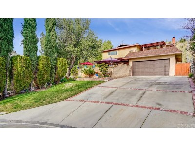 Canyon Country Single Family Home For Sale: 28308 Bonnie View Avenue