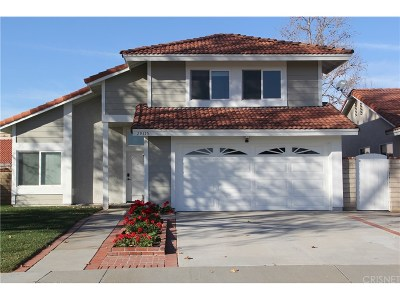 Castaic Single Family Home For Sale: 29315 Quincy Street
