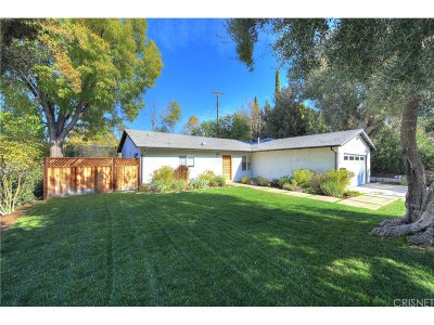 Woodland Hills Single Family Home For Sale: 5530 Irondale Avenue
