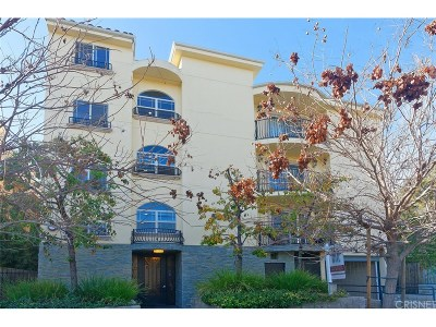 Valley Village Condo/Townhouse For Sale: 5315 Bellingham Avenue #204