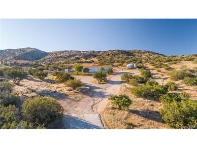 Acton Single Family Home For Sale: 6332 Escondido Canyon Road