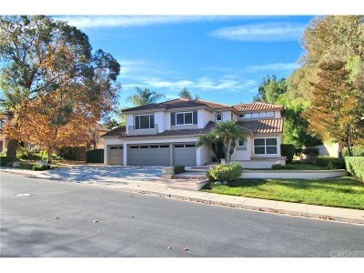 Simi Valley Single Family Home For Sale: 630 Larchmont Street