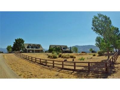 Tehachapi Single Family Home For Sale: 23205 Marigold Avenue