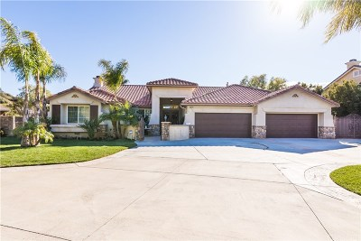 Castaic Single Family Home For Sale: 30272 Barcelona Road