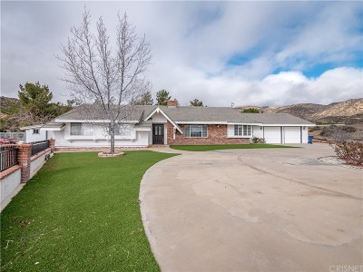 Acton Single Family Home For Sale: 35433 Red Rover Mine Road