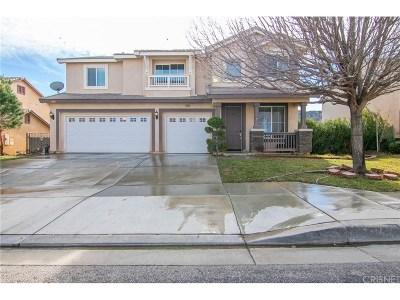 Lancaster Single Family Home For Sale: 7540 Ridge View Drive