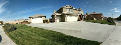 Palmdale Single Family Home For Sale: 2535 Duomo Street
