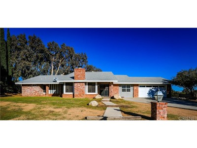 Palmdale Single Family Home For Sale: 819 West Denise Avenue