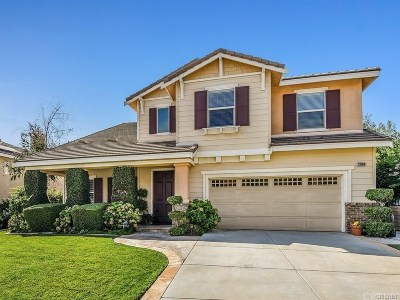 Castaic Single Family Home For Sale: 28068 Hayward Drive