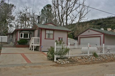 Lake Hughes Single Family Home For Sale: 43678 Trail K