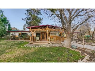 Acton Single Family Home For Sale: 4201 Escondido Canyon Road