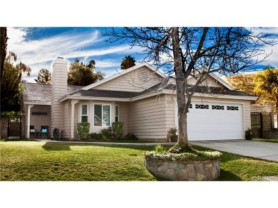 Castaic Single Family Home For Sale: 28408 Avion Circle
