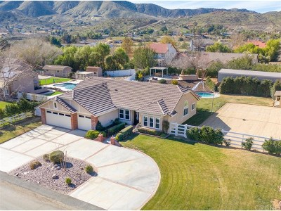 Acton Single Family Home Active Under Contract: 32735 Rancho Americana Place