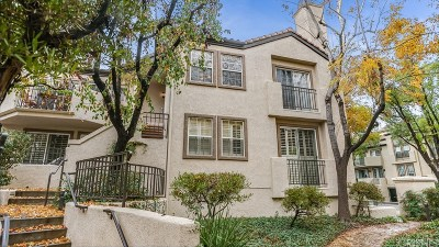 Valencia Condo/Townhouse For Sale: 24143 Del Monte Drive #284