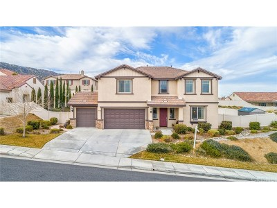 Palmdale Single Family Home For Sale: 41629 Chardonnay Avenue