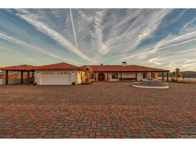 Agua Dulce Single Family Home For Sale: 11755 Spade Spring Canyon Road