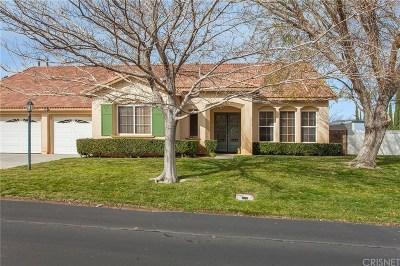 Palmdale Single Family Home For Sale: 40937 Ridgegate Lane