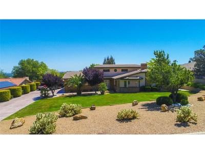 Palmdale Single Family Home For Sale: 41710 Misha Lane