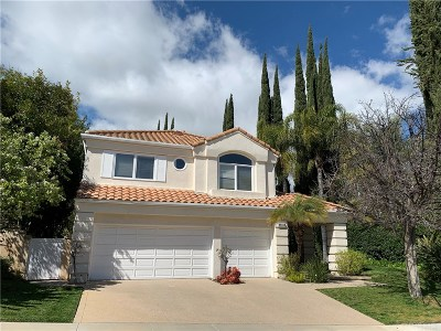 Calabasas Single Family Home For Sale: 4389 Park Blu