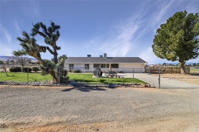 Palmdale Single Family Home For Sale: 41609 22nd Street West
