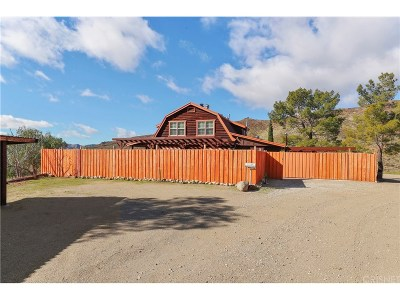 Acton Single Family Home For Sale: 31820 Hughes Canyon Road