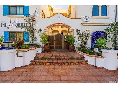 Sherman Oaks Condo/Townhouse For Sale: 13308 Valleyheart Drive #301
