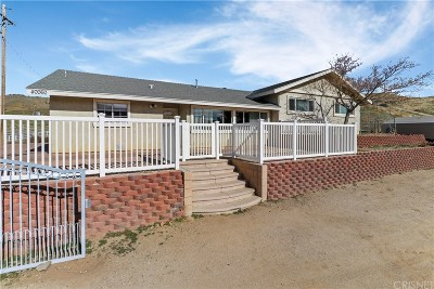 Leona Valley Single Family Home For Sale: 40060 75th Street West